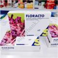 Floracto Флоракто