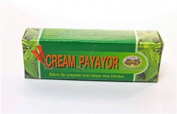 Abhai Bhubejhr Cream Payayor