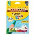 บิค คิดส์ อีโวลูชั่น ไทรแองเกิ้ล ดินสอสีสำหรับเด็ก 12 สี 1 กล่อง
