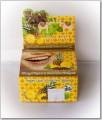 Thai Siam Toothpaste